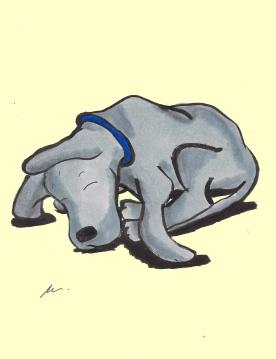 """""""Sleepy Great Dane"""""""